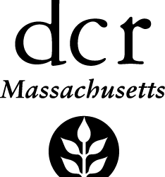 DCR Programs for Winter-Spring 2019
