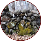 image of stonewall with moss growing on it