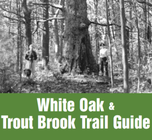 white oak trout brook trail guide clickable link to brochure